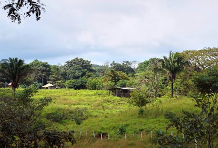 Santa Teresa Area San Isidro